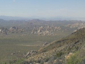 Vue depuis Ryan Mountain (Joshua Tree)