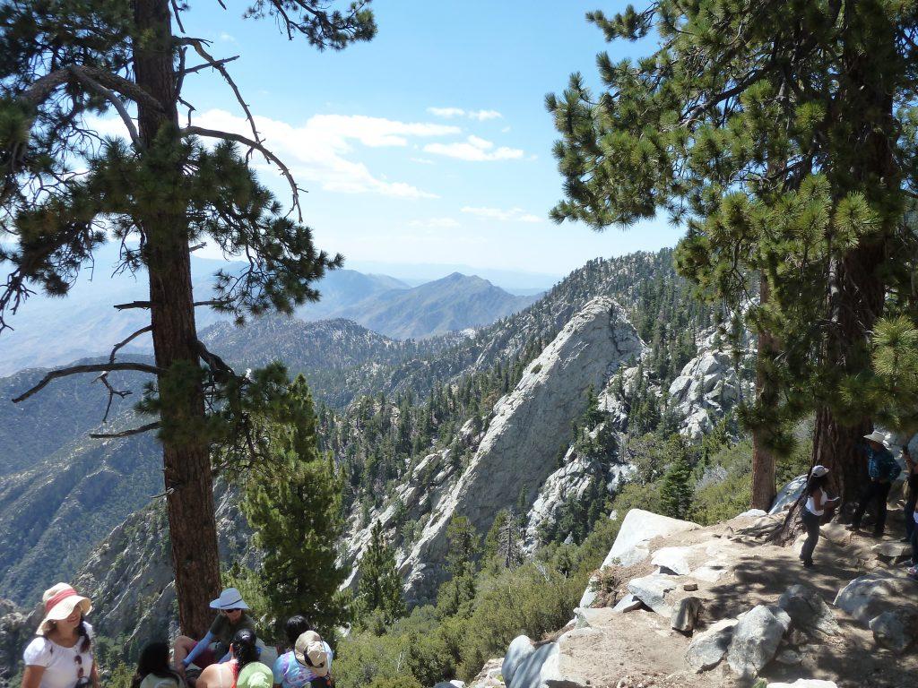 Rochers et forêts aux alentours de l'arrivée du tram aérien (Parc du Mont San Jacinto)